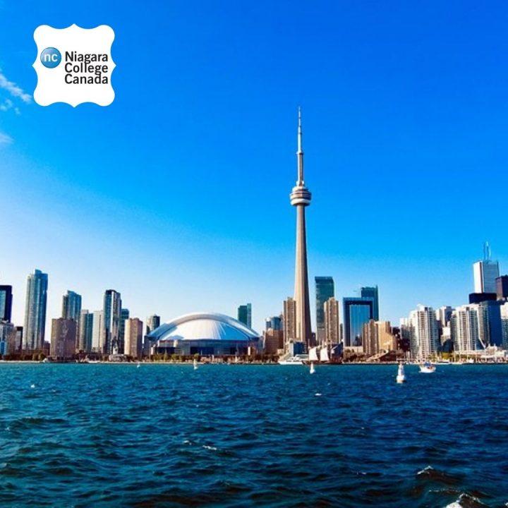 Niagara College Toronto